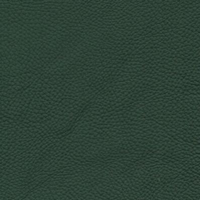 Tmavě zelená SPESSORATO 3021