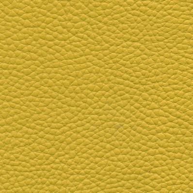 žlutá PULL 0053